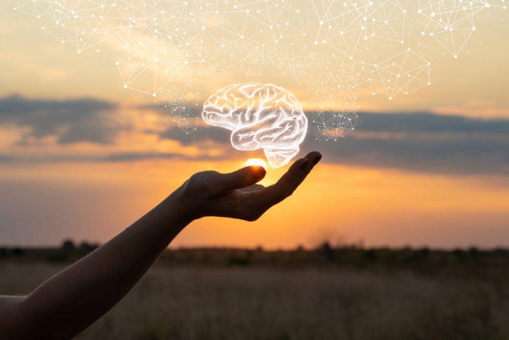 Mózg zzachodem słońca